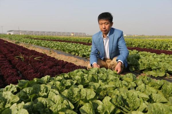 马铁民在蔬菜种植基地. 受访者供图