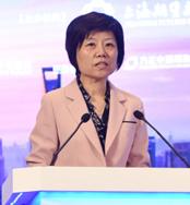 上海市政府副秘书长宋依佳