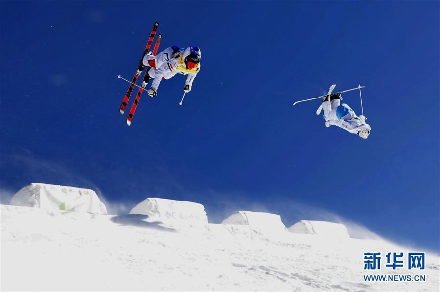 运动员在河北张家口市崇礼区太舞滑雪场参加自由式滑雪雪上技巧世界杯比赛(2018年12月16日摄)。新华社记者 杨世尧