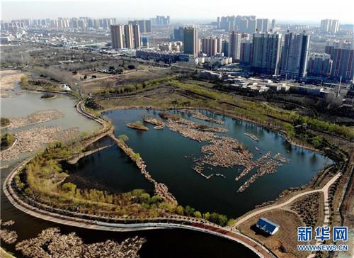 位于河南省平顶山市由采煤塌陷区修复改造的白鹭洲国家城市湿地公园(3月12日无人机拍摄)。