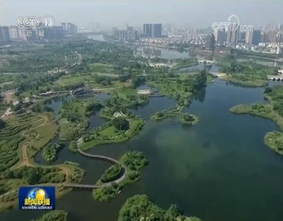 这里是四川最大的城市湿地公园――眉山市东坡城市湿地公园,它的绿地和水域面积达到了3000多亩,每天吸引市民游客1万多人次。