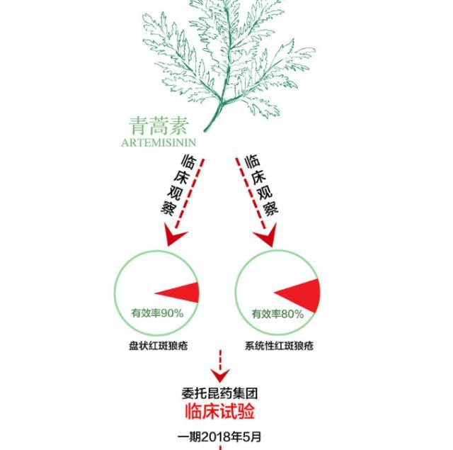 屠呦呦团队治红斑狼疮有新进展 青蒿素概念股企业已试验