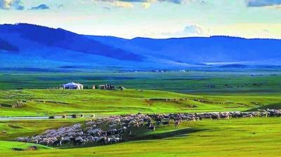 去中蒙河山阿尔山人鱼的眼泪歌词 游呼伦贝尔大草原