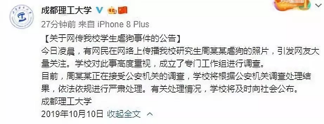 """""""研究生虐杀流浪狗"""":用虐狗挑衅爱狗者也是""""病"""""""