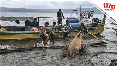 菲律宾火山爆发 马被灰烬包裹艰难喘气