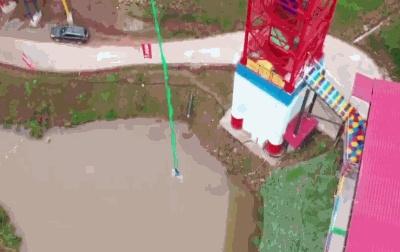 景区让肥猪蹦极 200斤活猪从68米的蹦极台被扔下