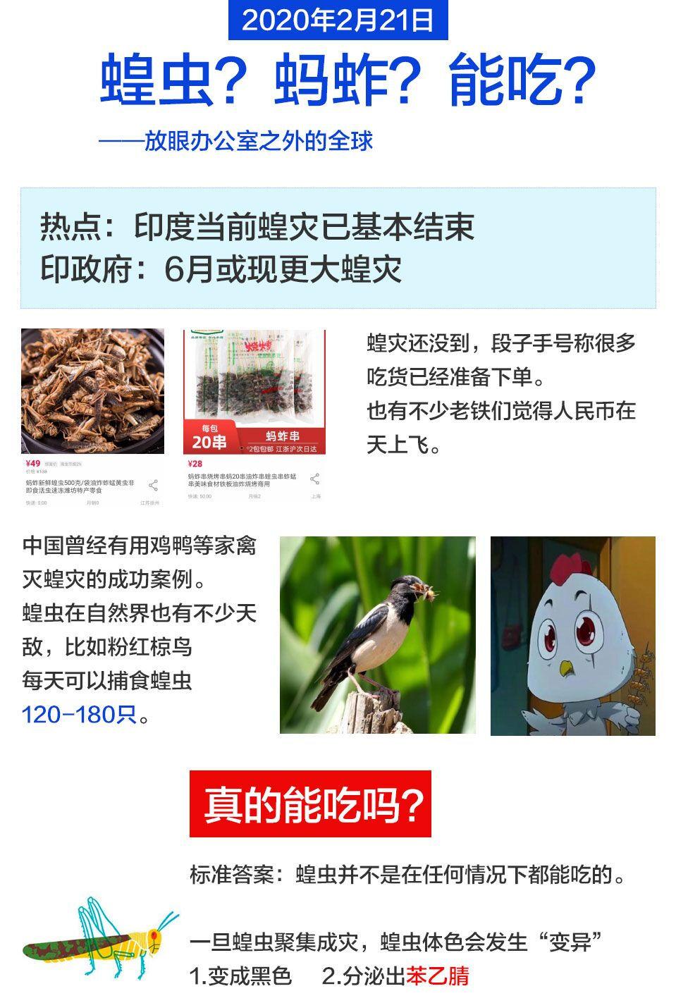 和讯职场小知识:蝗虫?蚂蚱?能吃?
