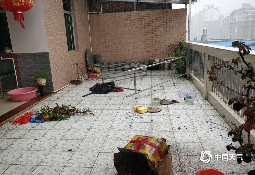 江西定南遭遇强对流 毁窗拔树冰雹满地