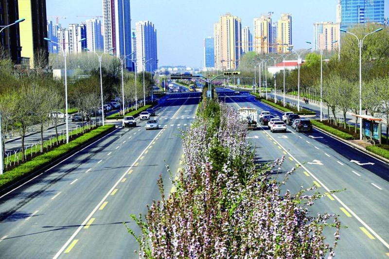 来济南西部新城偶遇春天