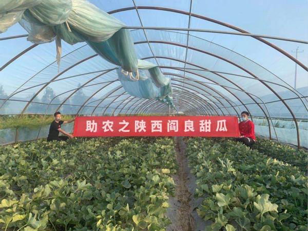 http://www.xaxlfz.com/xianfangchan/110937.html
