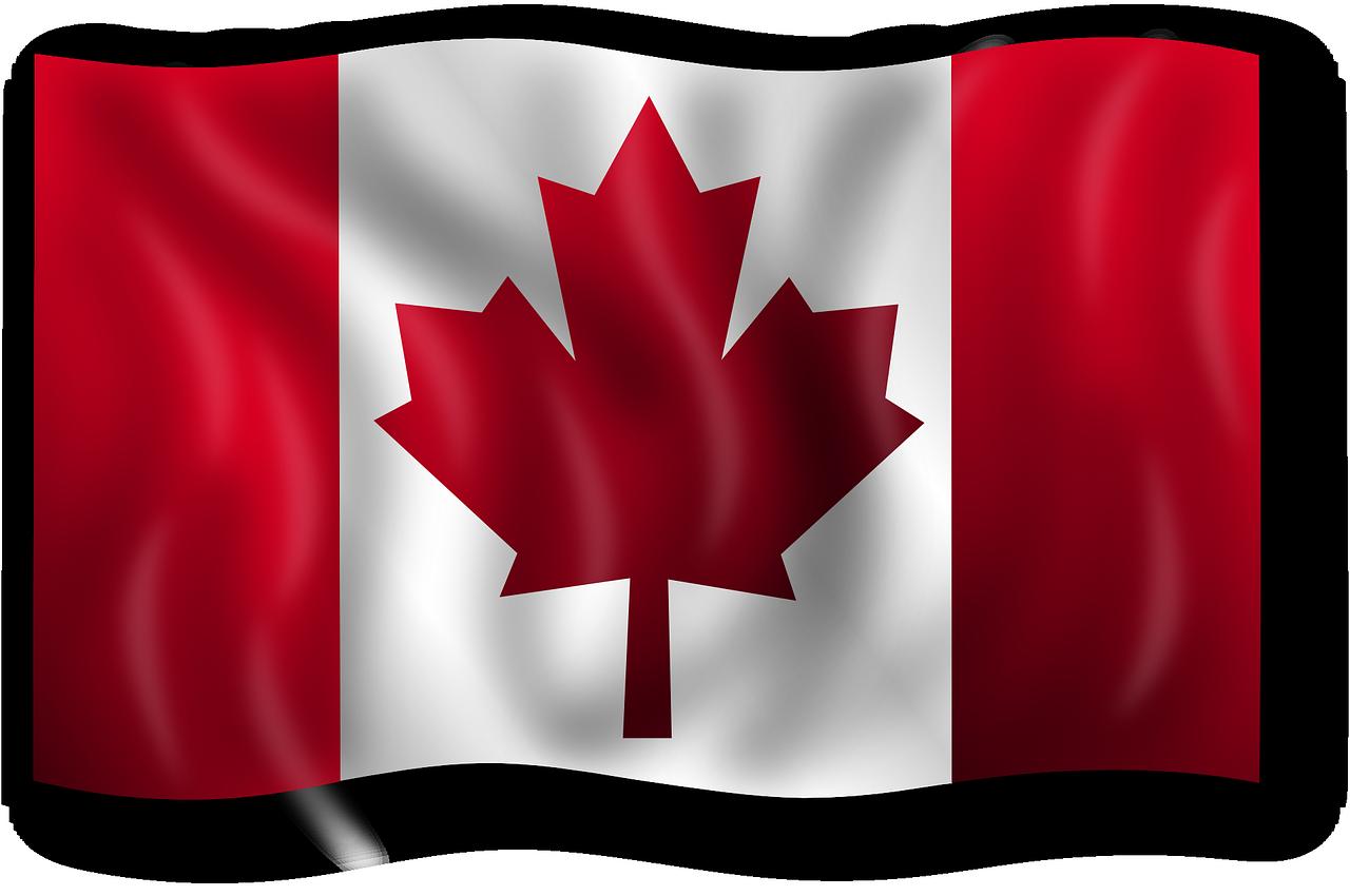加拿大央行:央行数字货币应提高包容性和可用性