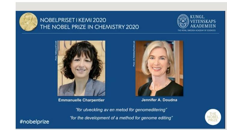 """诺贝尔化学奖颁给发现遗传剪刀改变DNA技术的2位女科学家,""""明智应用""""CRISPR技术事关人类未来"""