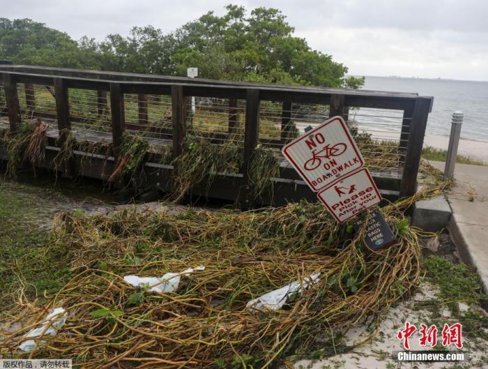 """热带风暴""""埃塔""""肆虐美东南部地区 致至少4人死亡"""