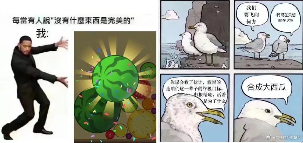 """干掉郑爽, 打败华晨宇! 诡异火爆的""""合成大西瓜"""", 都靠啥套路?"""