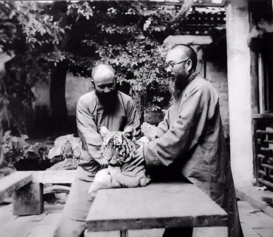 """大叔用圆珠笔画出百骏图震撼网友!你知道80年前有位大叔画出""""飞虎图""""震撼世界么?"""