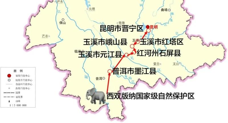 """全民围观,一路""""象""""北"""
