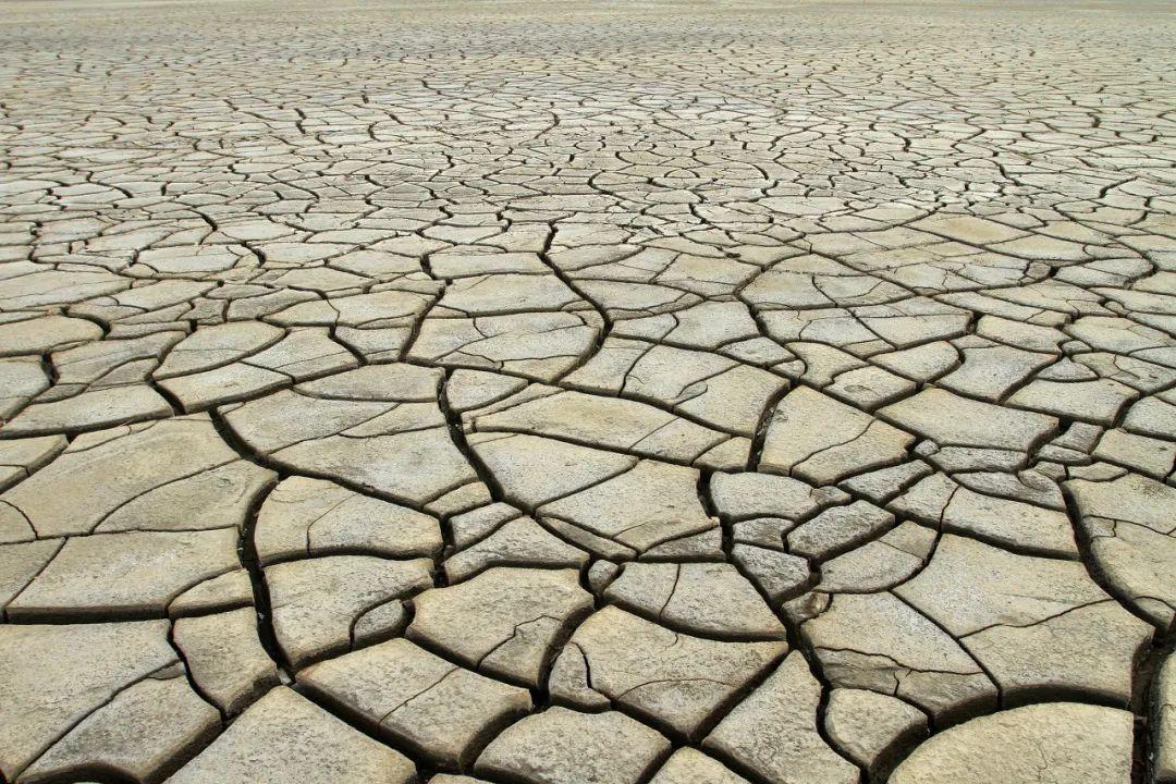 告急!'世界粮仓'遭百年一遇大旱,近2000万人或挨饿!央行紧急加息,通胀率爆表,全球农产品又要飙?