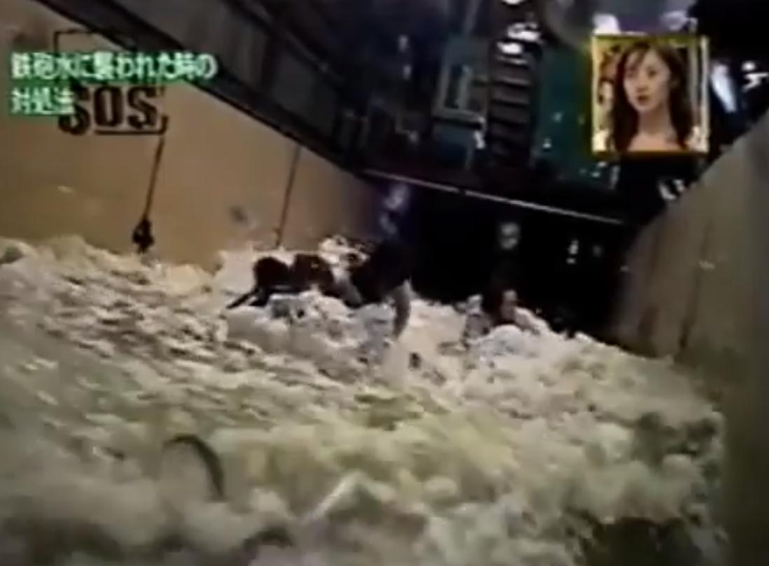 牵动人心!洪水接触的一切食物都要丢弃 遭遇洪灾可以尝试这样自救!