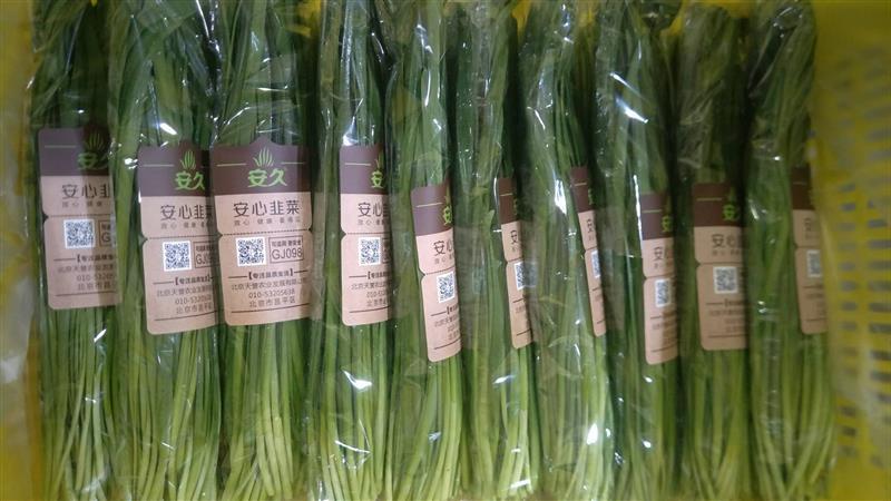 蔬菜采后技术系列之十九韭菜夏季采后管理指导意见