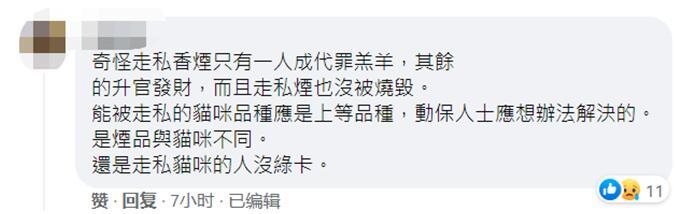 国际流浪动物日,台当局杀死154只猫,声称爱猫的蔡英文脸书被灌爆